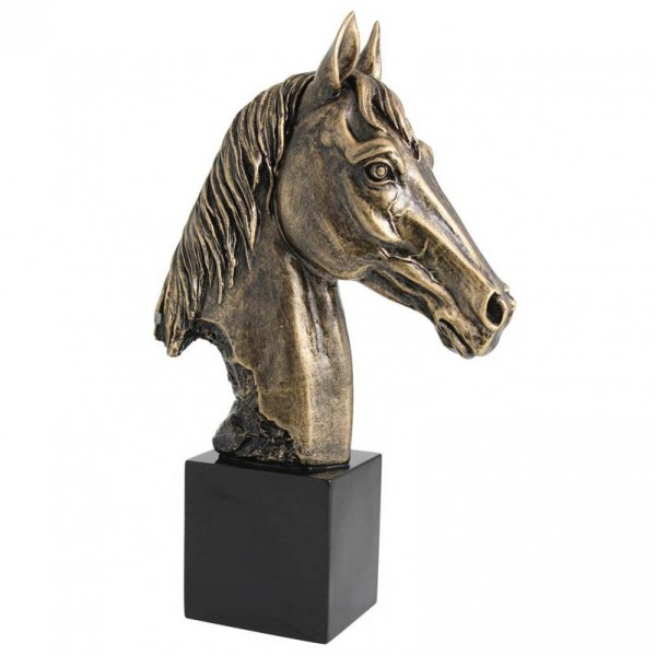 Troph es gravures expert troph e animaux cheval - Trophee animaux ...
